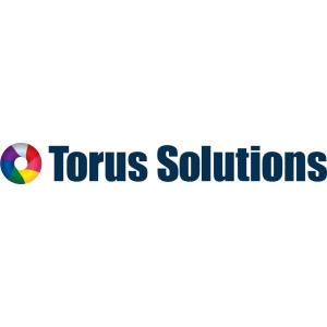 Torus Solutions